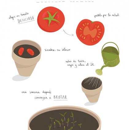 Horticultura 101