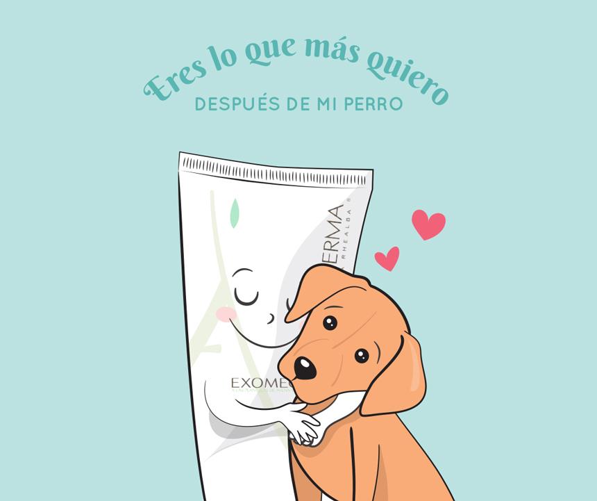 aderma-querer-perro